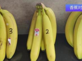三星冰箱怎么样?为健康生活提供新鲜蔬果